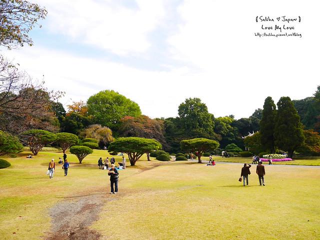 日本東京自由行新宿御苑庭園景點 (35)