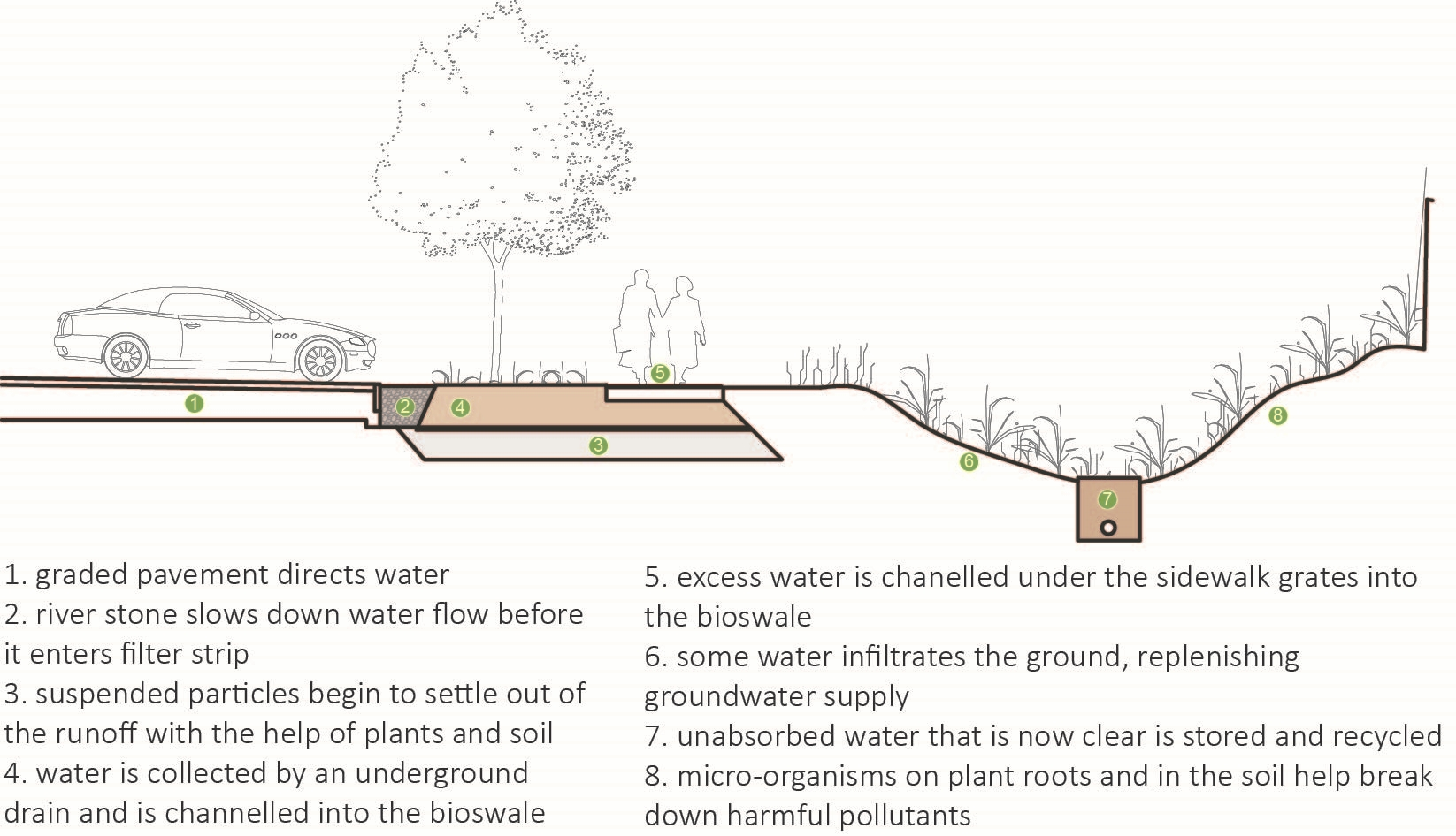 Picture of a Bioswale Analysis for Water Filtration