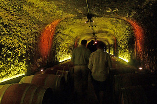 Del Dotto Vineyards Historic Winery and Caves - Cave tour