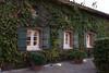 Viansa Winery #7 by ccb621