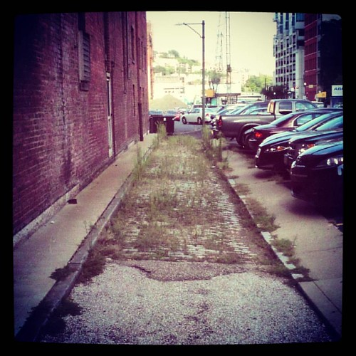 The alley next to the old Dennison Hotel is slowly being reclaimed by nature.