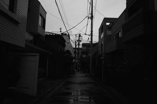 GR028459.jpg