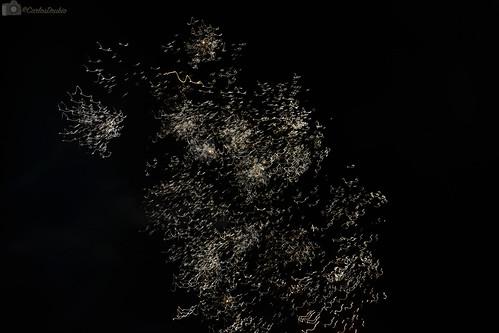 Fuegos Artificiales en feria, Malagon.