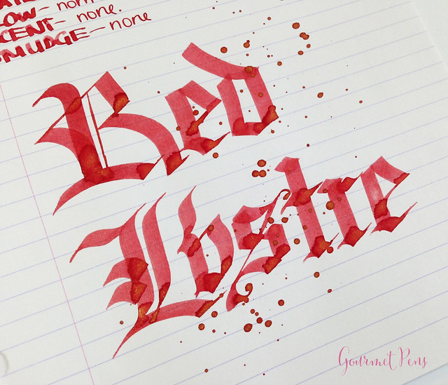Ink Shot Review Diamine Red Lustre (7)
