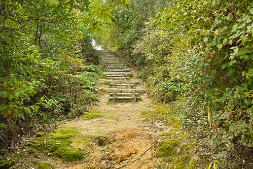 石鎚神社(総社市) #4