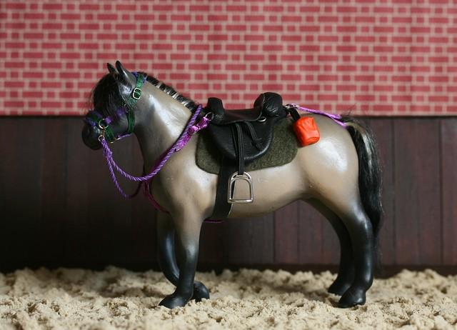 Rhona's Treeless Saddle