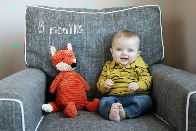 Finn at 8 months