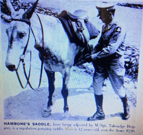 hambone - 4th Field Artillery Battalion - Pack - fort carson -  pack mule 4