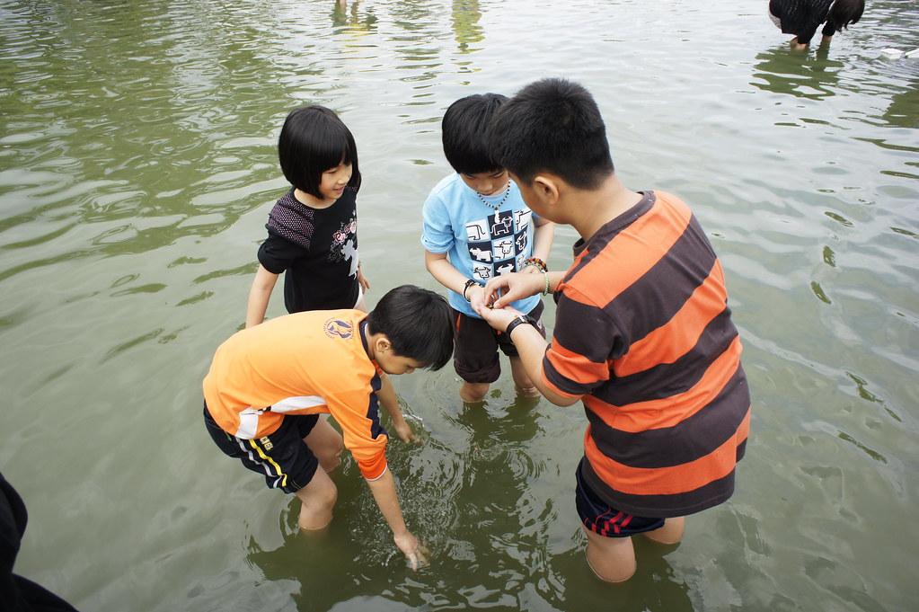 壽豐立川漁場 (18)