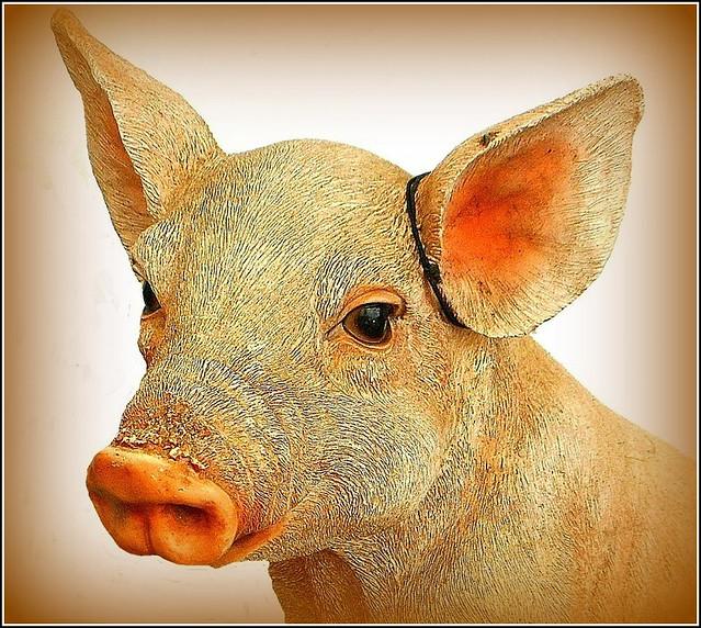 Miss Piggy .