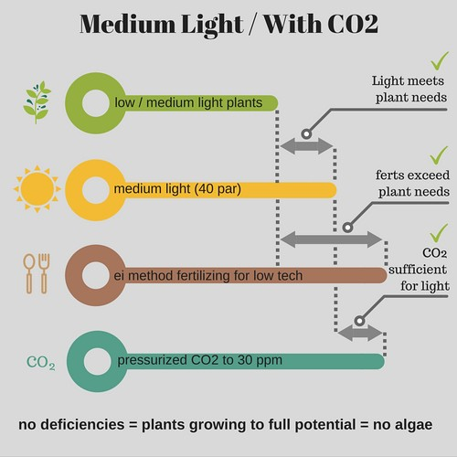 Planted Aquarium Diagram - Medium Light with CO2