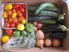 10 pound CSA vegetable box Aug.12