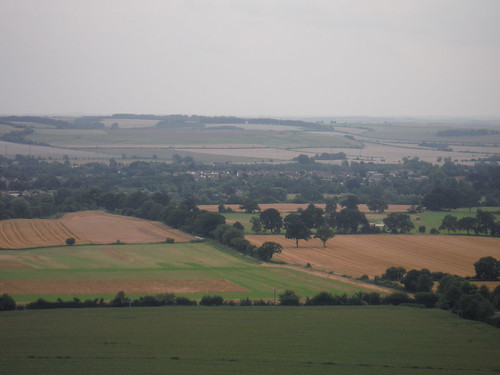 Pewsey from Giant's Grave