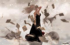 El viento ......
