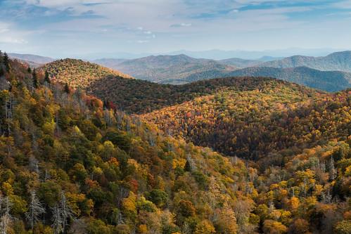 autumn usa fall forest canon landscape us unitedstates northcarolina canton blueridgeparkway circularpolarizer eastforkoverlook canon1585 canon70d