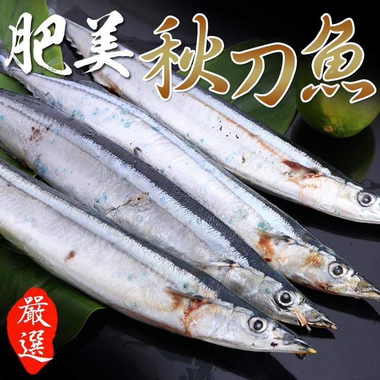 sauryfish09