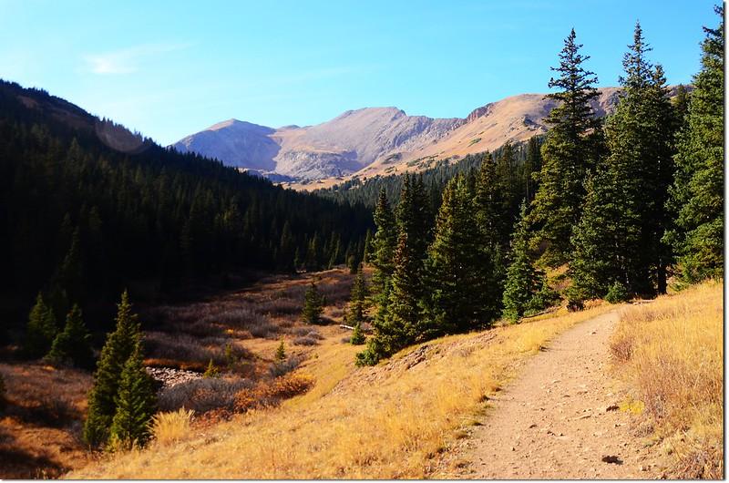 Pentingell Peak from Herman Gulch Trail 6
