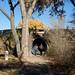 Main Entrance -- Visitor's Center; Albuquerque, NM, Rio Grande Nature Center [Lou Feltz] by deserttoad