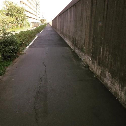 隅田川沿いに復帰