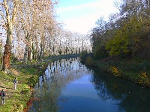 Reflets sur le canal latéral à la Garonne - Castillon-de-Castets - Gironde - Aquitaine - France