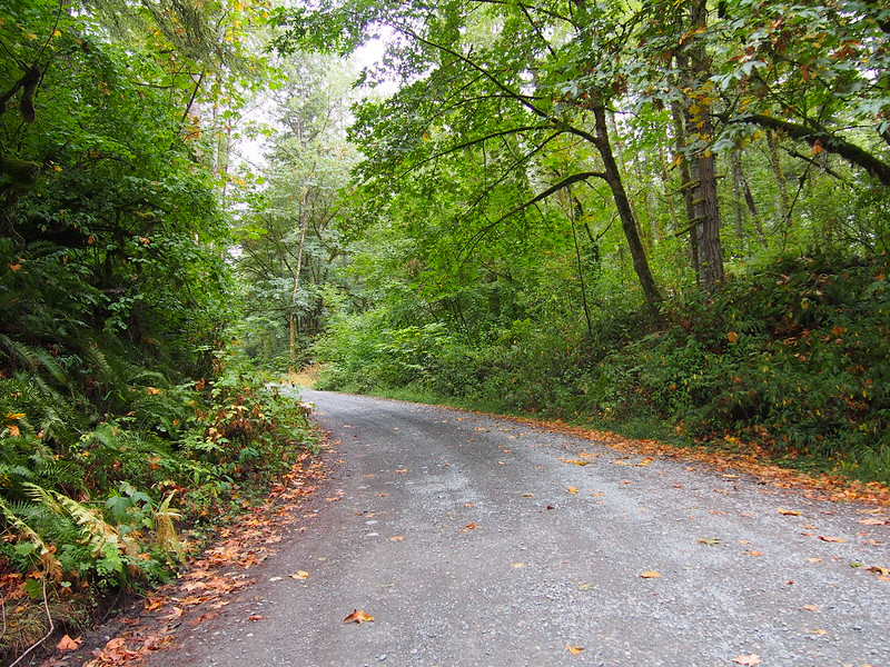 Road to Snoqualmie Valley Trail