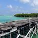 MIN 263_Sian Kaan_bridge - Boca Paila