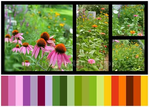 sun garden colors