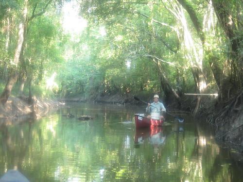 Heading down the bayou.