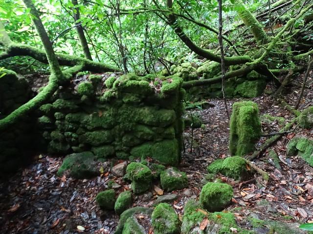 Ruinas de la Ruta de Zarzo a Chelo