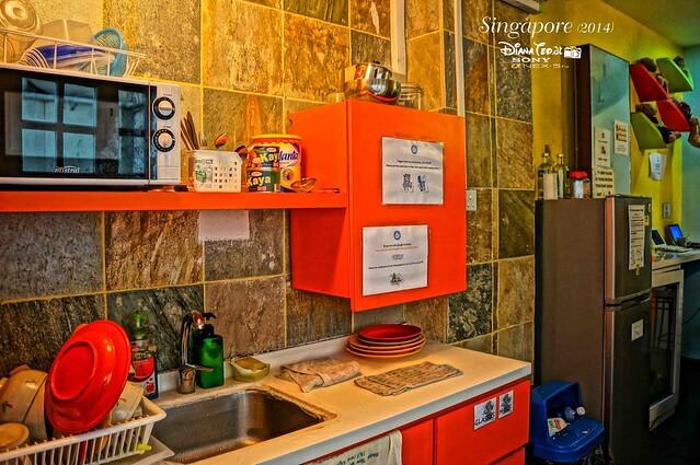 A Beary Good Hostel 08