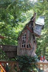 building, hut, tree, log cabin, tree house, home,