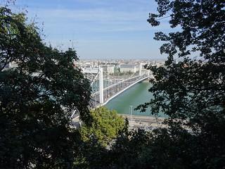 Image of Budapest, Erzsébet híd, Hungary. 2015 herfst budapest boedapest hongarije hungary magyarország erzsébet híd elisabeth bridge brug danube donau autumn