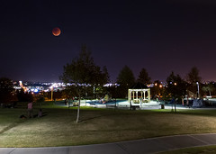 The Lunar Eclipse over Sycamore Highlands Park