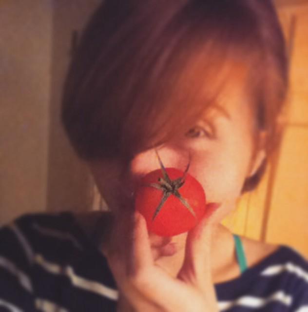 Lovely tomato 5/52