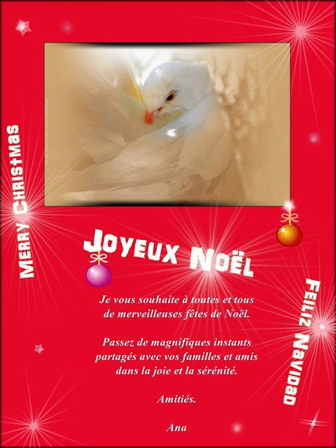 Carte de Noël 2015