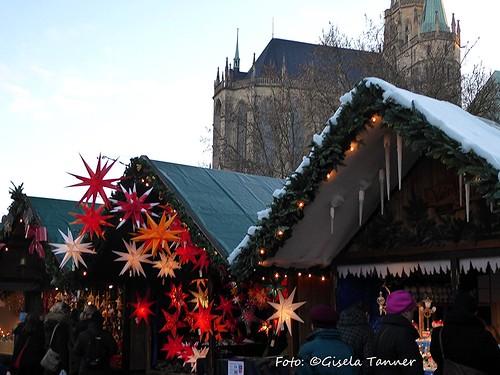 Erfurt - Weihnachtsmarkt und florales
