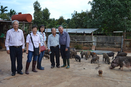Vietnamese native pig farmer Mr Duc with researchers