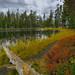 Siesta Lake by pendeho