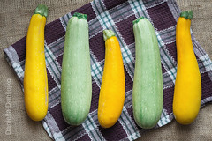 Yellow and green zucchini laid out in a row on a c…
