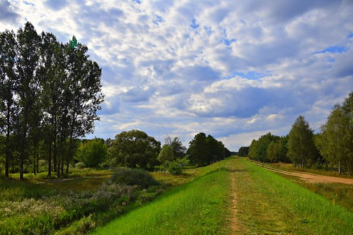 path road landscape view nature green grass meadow tree trees sky clouds cloudy blue summer rzeka river warta valley dolina dolinawarty łódzkie lodzkie polska poland weather