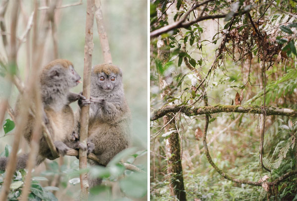 RYALE_Madagascar_Blog2_022