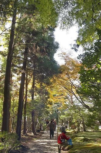 【写真】2014 紅葉 : 法然院/2018-10-19/IMGP7489
