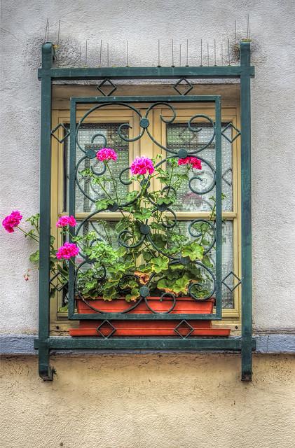 Window Montmartre