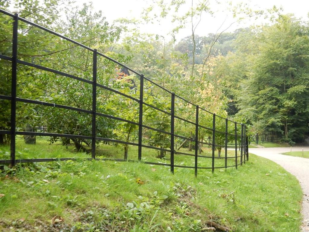 Fence Marlow Circular