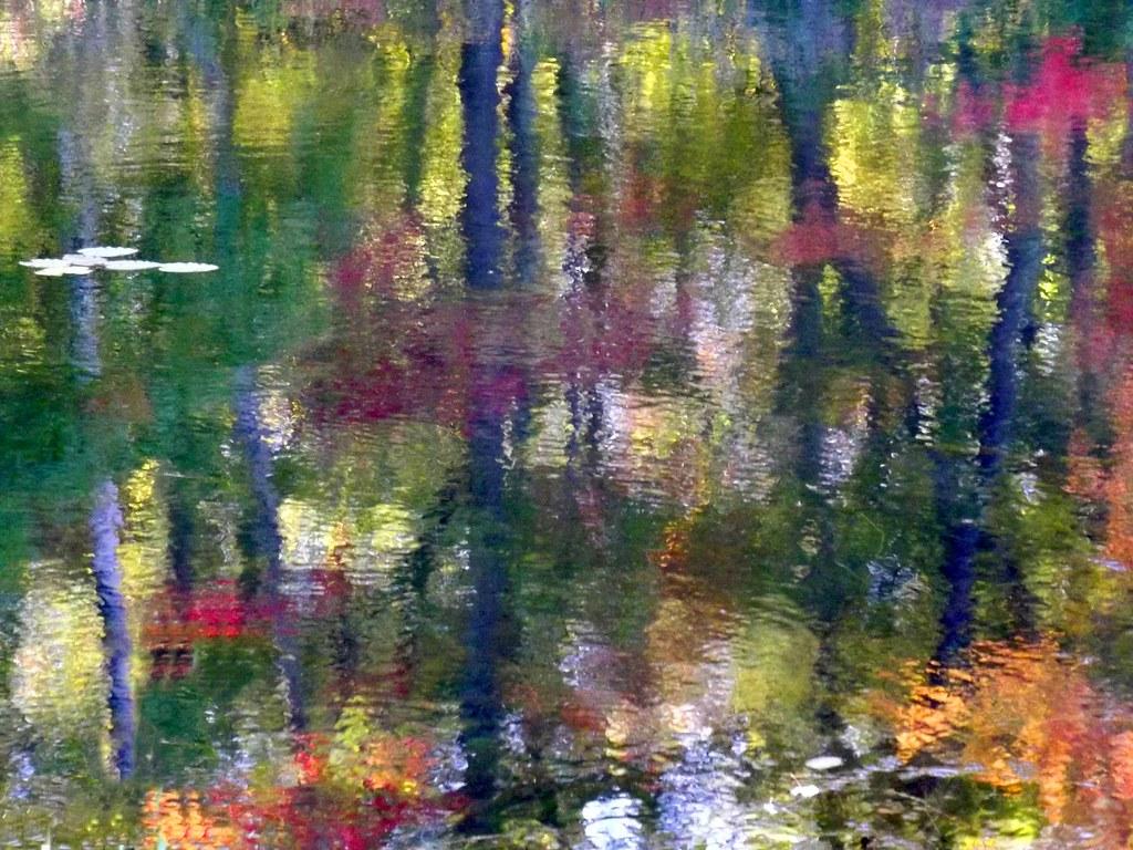 Monet Fall