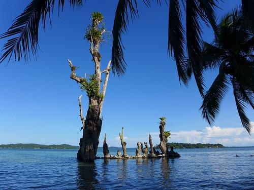 Isla Carenero - Bocas del Toro - Panama