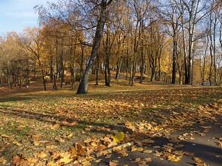 Saturday. Riga.