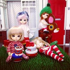 As latis já estão arrumando a casa pro Natal