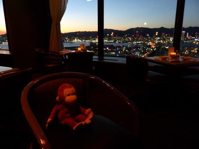 Monkey enjoying the bar