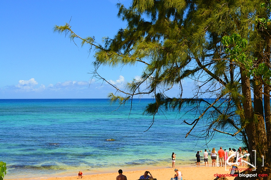 Hawaii_0166